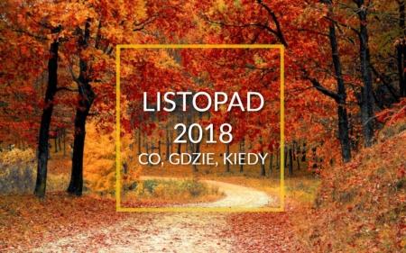 NAJWAŻNIEJSZE WYDARZENIA SZKOLNE - LISTOPAD 2018
